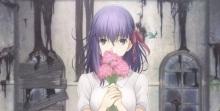 fate-sakura-cabecera